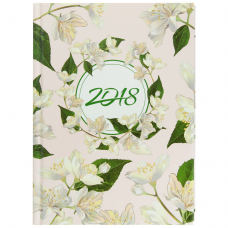 Щоденник датований 2018 ESTILO, A5, 336 стр.